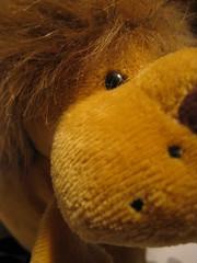 Leon Perfil (Jos Ramn de Lothlrien) Tags: hair toy lion jr amarillo leon gift mueco juguete peluche melena leoncito producciones pelitos reydelaselva kingof greitas