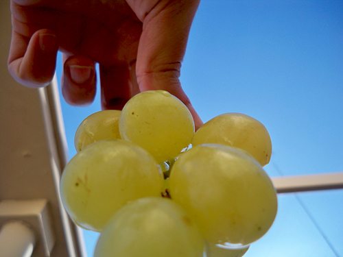 new-year-grapes-spain