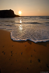 St Pierre Quiberon (kerivoa) Tags: ocean sunset sea mer nature marine bretagne breizh armor morbihan 56 bzh littoral côtesauvage saintpierrequiberon