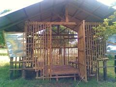 bahay ng kambing 2 (kia bee(o^_^o)) Tags: trees animals farm bukid greenfields tranquilplace
