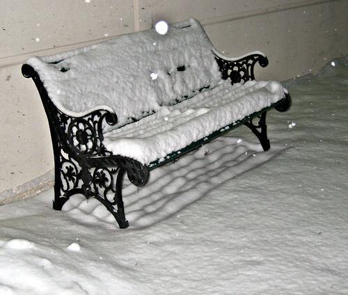 Snowy Seat (by GenBug)