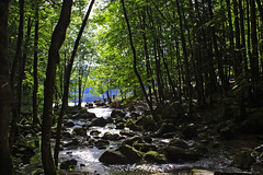 08 5086 - Jura, cascades du Hrisson, l'Eventail, passerelle Sarrazine (jeanpierreossorio) Tags: cascade fort torrent sousbois