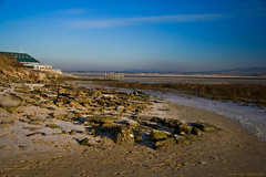 The Yacht Club (andreea_gerendy) Tags: morning winter sea sky sun house snow france cold building ice beach grass birds sunrise river landscape sand rocks stones traces sunny delta northsea vegetation normandie lowtide normandy nordpasdecalais yachtclub thechannel lacanche letouquetparisplage canoneos400d platinumphoto andreeagerendy