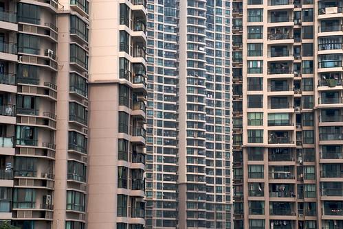 Colmenas. Shanghái (3)