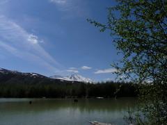 A Trip to Mount St. Helens (mattithyahu) Tags: volcano fieldtrip mountsthelens sthelens hummocks johnstonridge coldwaterlake johnstonridgeobservatory hummockstrail