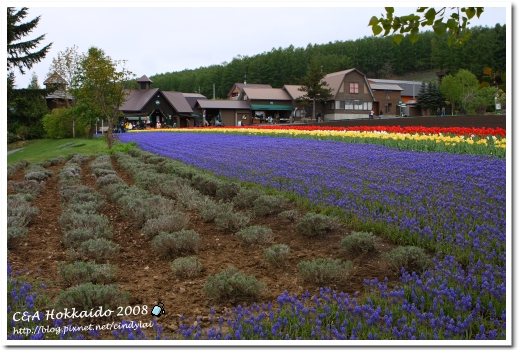 Hokkaido_0531