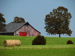 Country view (funtik.cat) Tags: trees summer sky usa nature grass barn illinois view marion hay