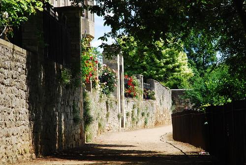 ニューカレッジの庭園