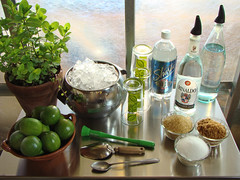 Mojito Bar - Stocked & ready to roll (mondomuse) Tags: bar recipe mint spirits cocktail liquor mojito caribbean lime cuban spearmint alcoholicbeverage drinkstrolley whiterum drinkresponsibly snapsforhappibun travelingmojitobar cocktailsfromthegarden thankstojudy funformyfoliafriends bestmojitorecipe