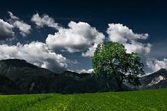 On The Edge II (Philipp Klinger Photography) Tags: blue sky mountains tree green field grass clouds photoshop austria sterreich border krnten carinthia hills slovenia edge philipp processed on the klinger karawanken dcdead karawanks