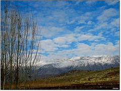 Shirin Mountain, Kurdistan (Shivan Sito) Tags: blue winter sky cloud mountain snow tree nature canon landscape soe erbil kurdistan arbil kurdish kurd shirin shivan barzan hewler irbil hawler   oremar