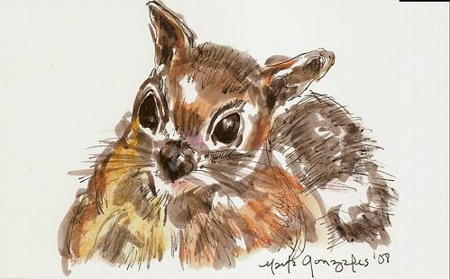 squirrel, ink wash and neocolor