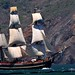 HMS Bounty as she sails in to San Francisco