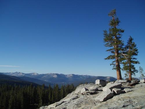 Lake 9900 View