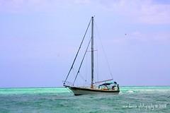 Come Sail Away..Come Sail Away With Me (ddancernc) Tags: gulfofmexico water sailboat aqua sailing beaches 2008 floridavacation aquawater bradentonbeachflorida mywinners floridawestcoast debbiedancer reindancerphotography