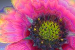 Abstract Flower (Big Greene) Tags: fiveflickrfavs
