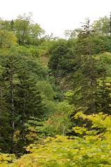 滝見沼から見た滝