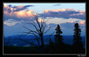 Silver Lining (Bonell Photography (dasbull)) Tags: blue trees light sky mountains clouds silver dark branches fluffy eerie roosevelt lodge hills panasonic yellowstone wyoming lining fz50 dasbull ronbonell