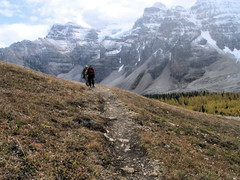 On the Trail to Eiffel Lake (OldDogNewTrick) Tags: alberta banffnationalpark valleyoftenpeaks calgaryevergreens sept252008
