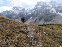 On the Trail to Eiffel Lake (OldDogNewTrick) Tags: alberta banffnationalpark valleyoftenpeaks calgaryevergreens sept252008