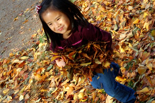 Leaf Fun 11-08 (160)