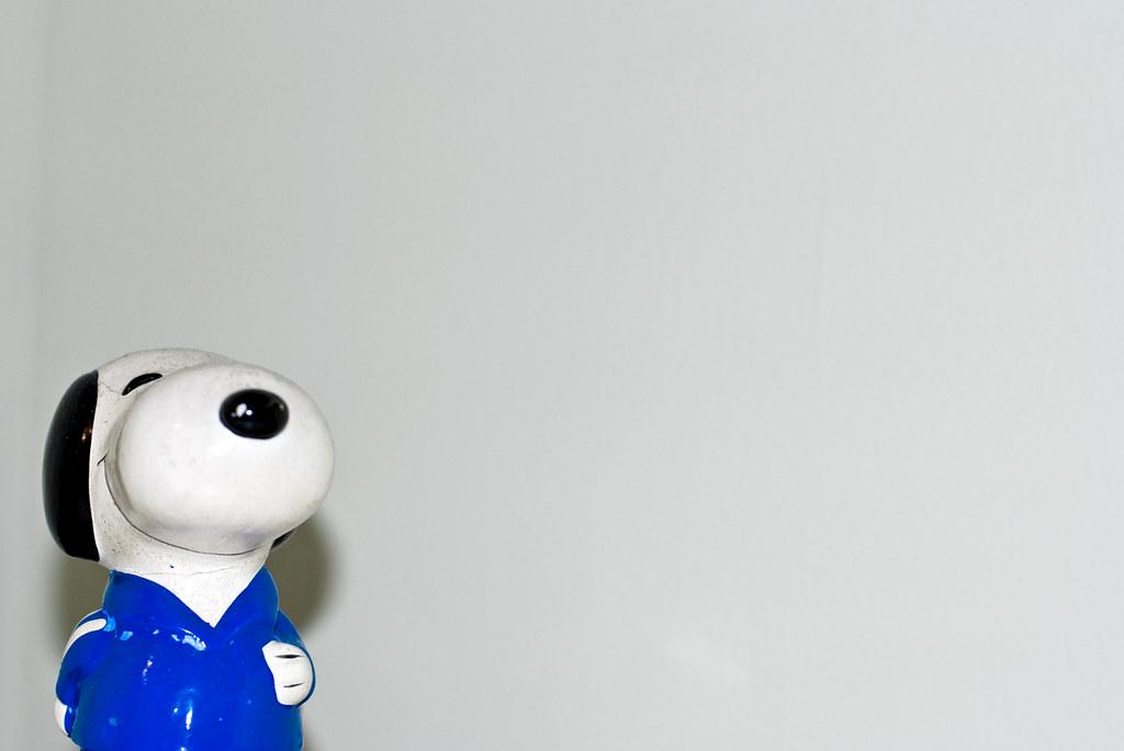 Snoopy, December 11th