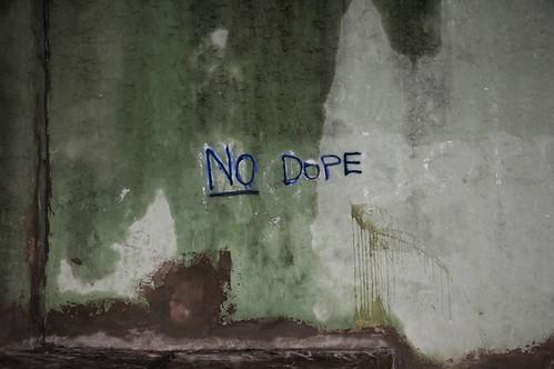 no dope_8399_1 web