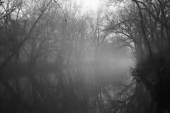 Misty River at Dusk (rob_valine) Tags: trees blackandwhite bw misty fog lowlight rivers nightphotos pottstown photoshopelements20 kodaktrix400 montgomerycounty pennsylvaina rangefindercamera blackwhitephotos photoatdusk manatawnycreek southeasternpennsylvania petri7srangefinder unlimitedphotos