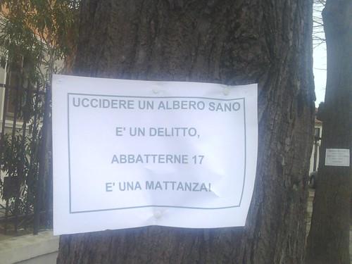 messaggio che informa della mattanza degli alberi