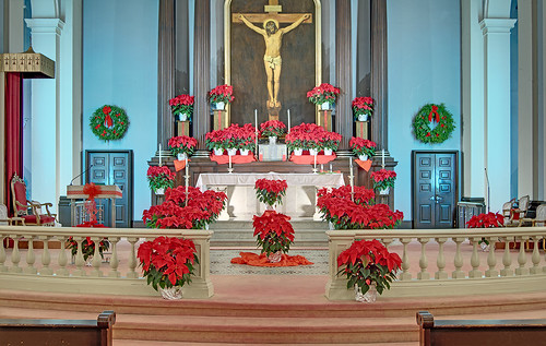 Basilica of Saint Louis, King of France (Old Cathedral), in Saint Louis, Missouri, USA - altar decorated for Christmas