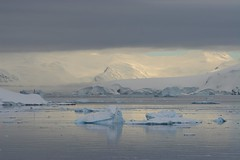Morning Light - Paradise Harbour - Antarctica (Heaven`s Gate (John)) Tags: cruise winter light sea cloud white mountain snow cold ice expedition water landscape bay morninglight paradise harbour dramatic tranquility antarctica glacier discovery icebergs waterscape drakepassage bergybits mvdiscovery 5photosaday weddle johndalkin heavensgatejohn p1f1 grahamland