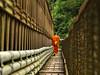 Footbridge over Nam Khan river (B℮n) Tags: topf50 topf300 unescoworldheritagesite mooi brug laos topf100 500faves soe topf200 luangprabang oranje stepbystep walkingpath buddhistmonk mekongriver downstream topf400 topf500 coconutpalms topf700 topf600 100faves woodenboards 50faves 200faves namkhanriver abigfave 300faves aplusphoto 400faves 600faves 700faves mightymekong boostert lesamisdupetitprince bridgeoverthenamkhanriver muddymekong lazyluangprabang benphotography richbrownriver twolazyrivers broadgreenmeadow walklikeamonktian