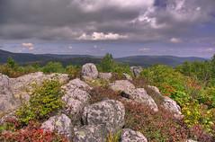 Highland color_HDR (Aperturef64) Tags: mountains virginia pentax va hdr blueridge graysonhighlands mountrogers appalachaintrail at k10d pentaxk10d mountrogersnationalrecreationarea highdynamicrangephotograph