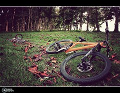 and my bike... (rev_adan) Tags: park old trees sea orange mountain grass leaves bike playground canon vintage eos bmx parking philippines msu downhill tires shock brakes dried pads mindanao naawan 40d revadan