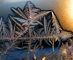 Crystal Morning (photoholic1) Tags: morning winter macro window sunrise closup soe danvers icecrystal iceflowers icepattern