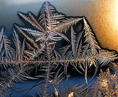 Crystal Morning (photoholic1) Tags: morning winter macro window sunrise closup soe danvers icecrystal iceflowers icepattern