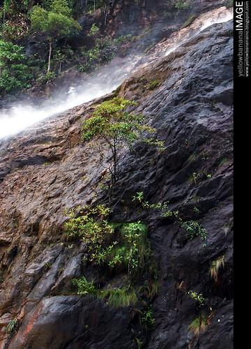 Berkelah  waterfall 08