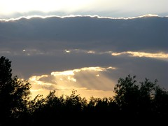 rays (venetia 27) Tags: trees sunset sky clouds oxford sunsrays portmeadow fromwindow