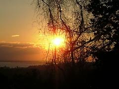 Pr-do-sol (Militsa) Tags: sunset brazil sky orange sun sol brasil laranja portoalegre sombra cu amarelo prdosol rs guaba riograndedosul rioguaiba colorphotoaward panoramafotogrfico