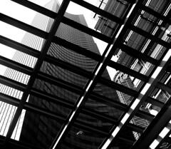 Damn Bird (JTContinental) Tags: seattle urban blackandwhite detail architecture grandmother frombelow bigmomma photofaceoffwinner photofaceoffplatinum pfogold pfoplatinum sept08pfobrackets mar09pfobrackets herowinner thepinnaclehof tphofweek7