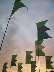 WOMAD green flags