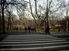120 (angelaamy2005) Tags: 圣诞 07 纽约 中央公园