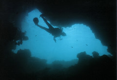 Underwater Photos - Chandelier Cave, Palau (Lao Wu Zei) Tags: nature underwater photos scuba diving chandelier 200views cave diver  palau nikonos