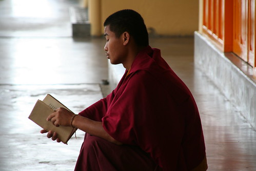 Reading monk - Lesender Mönch in Dharamsala