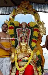 31 (tirumalatirupatidevasthanams) Tags: india temple andhrapradesh tirumala chiranjeevi suryanaidus