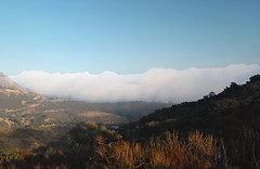 Marine Layer (Twitchietai) Tags: california mist green fog clouds coast view hiking brush malibu hills fields wilderness santamonicamountains shrubs oceano marinelayer charmleepark chaparal tartyshots