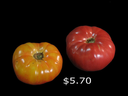 Tasty Heirloom Tomatoes