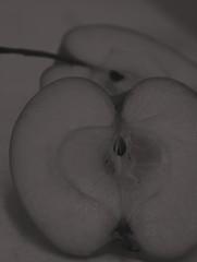 Manzana 2