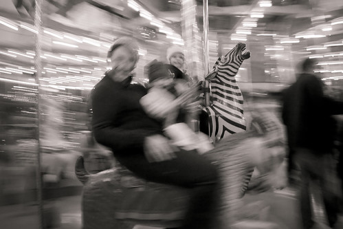zebra@theholidaycarousel-2