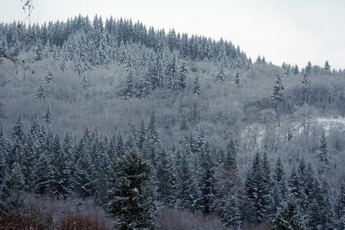 snow_landscape_2